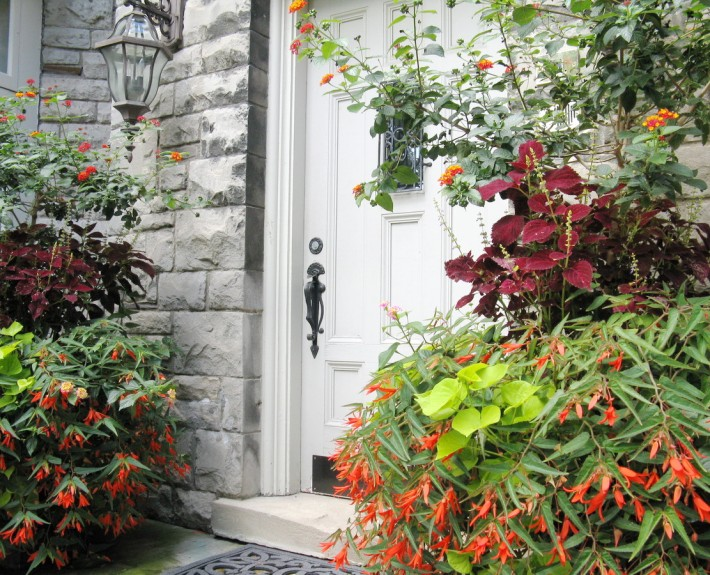 Summer - Entrance Plantings