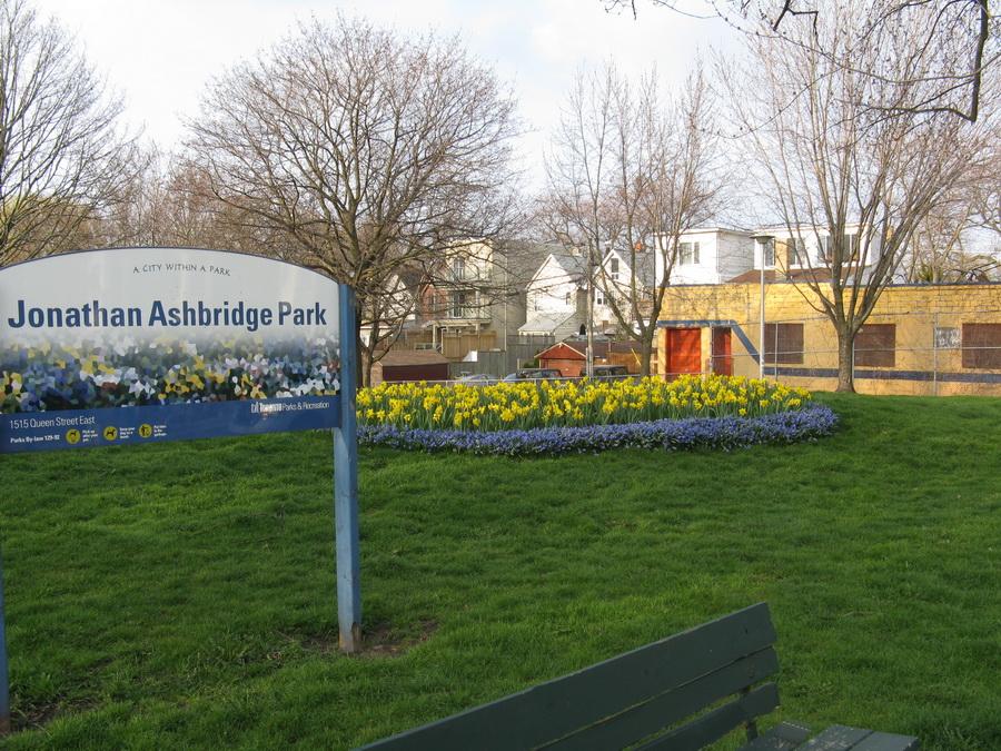 Jonathan Ashbridge Park - Landscaping