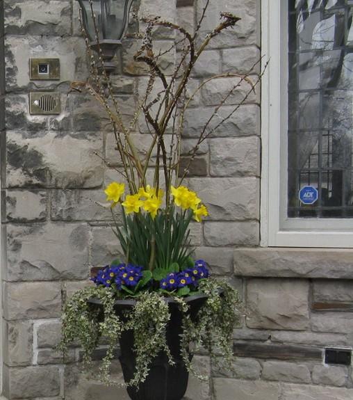 Spring Residential Planter