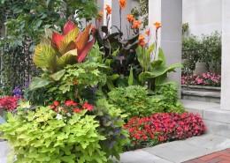 Planting - Landscape Services