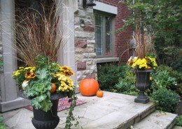 Autumn Entrance Landscaping