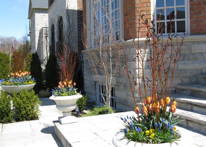 Spring Residential Planters
