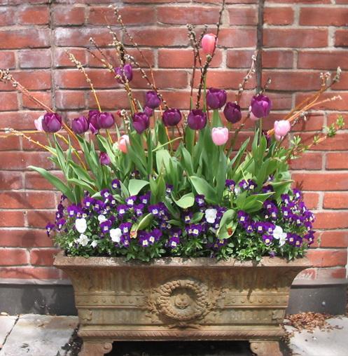 Spring Residential Planting